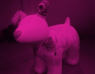 DFDS Snowdog image 1
