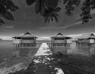 Garuda Raja Ampat More Accessible by RoosterPR - img 2