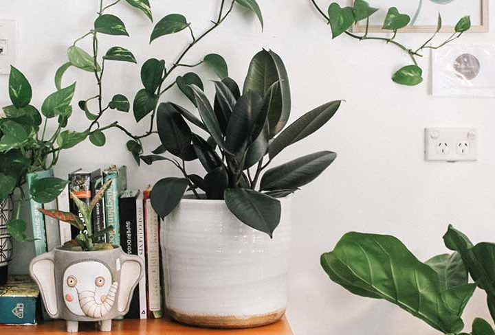 How to Bring Balance to Your Home This Spring: A Lagom Guide