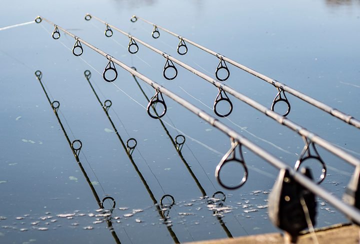 Outlaw Pro Reeled in by Rooster